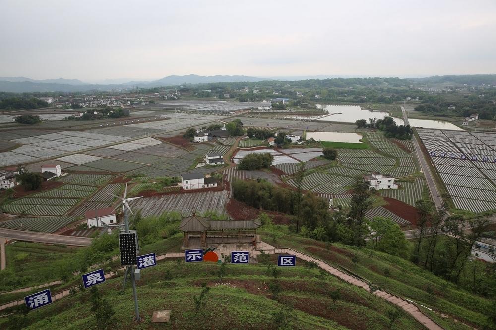 泸州市江阳区分水岭镇董允坝村的省级高效节水灌溉规模化试点项目.